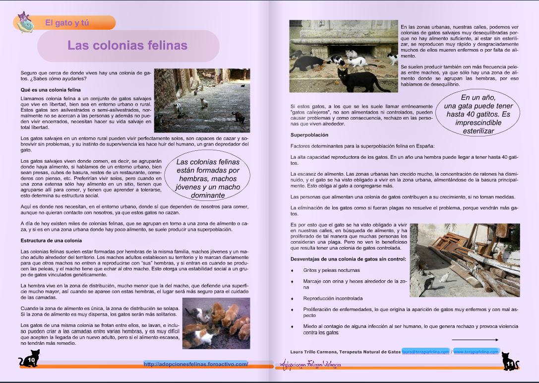 Revista Adopciones Felinas