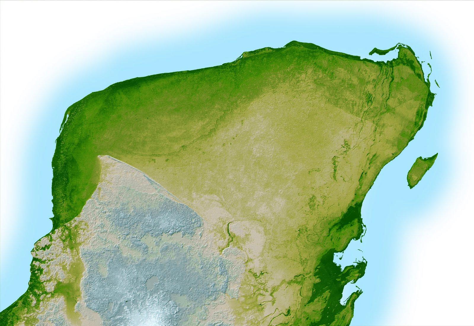 vegetacion de la peninsula de yucatan: