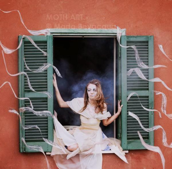 Windows Project by Marta Bevacqua