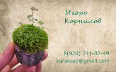 Ландшафтный дизайн в Курске: