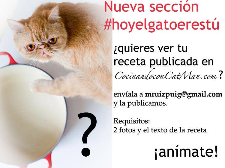 hoyelgatoerestu #Hoyelgatoerestú