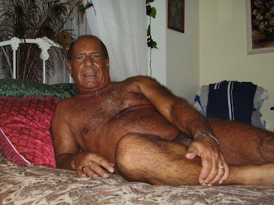 daddy silver bears - men hairy gay - silverdads
