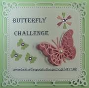 ButterflySpotChallenge