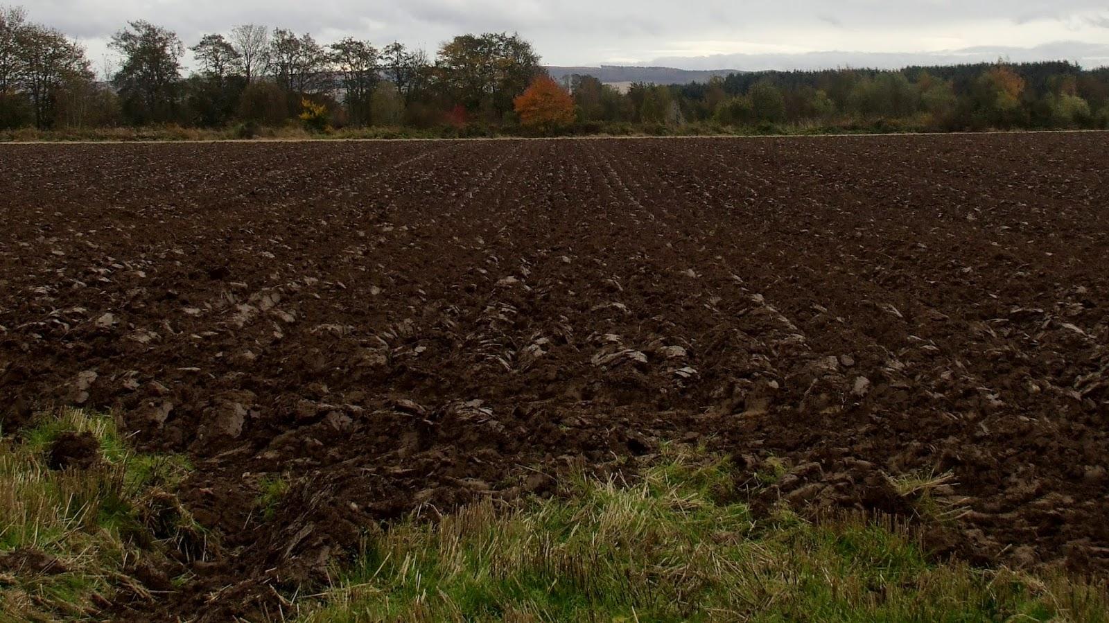 field 24.10.14