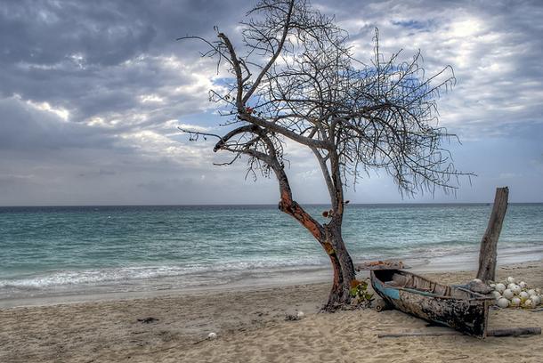 من أروع الشواطئ في العالم على خورة فقط ! negril.png