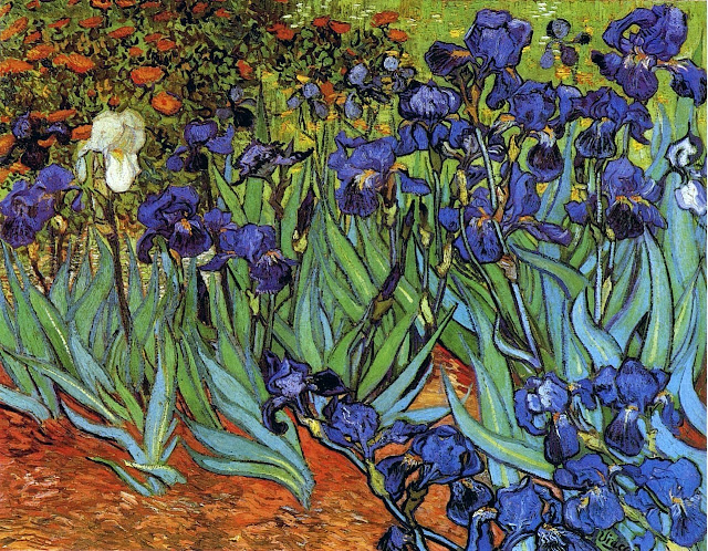 "Picture of ""Irises"" by Vincent van Gogh. 1889"