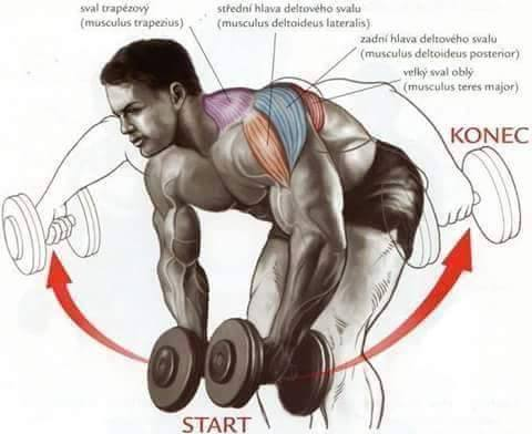 Bodybuilding weight training Exercises step by step instructions