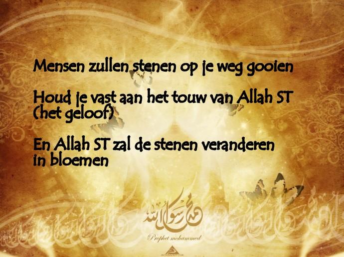 Citaten Over Bloemen : Citaten en wijze woorden uit de islam stenen worden bloemen