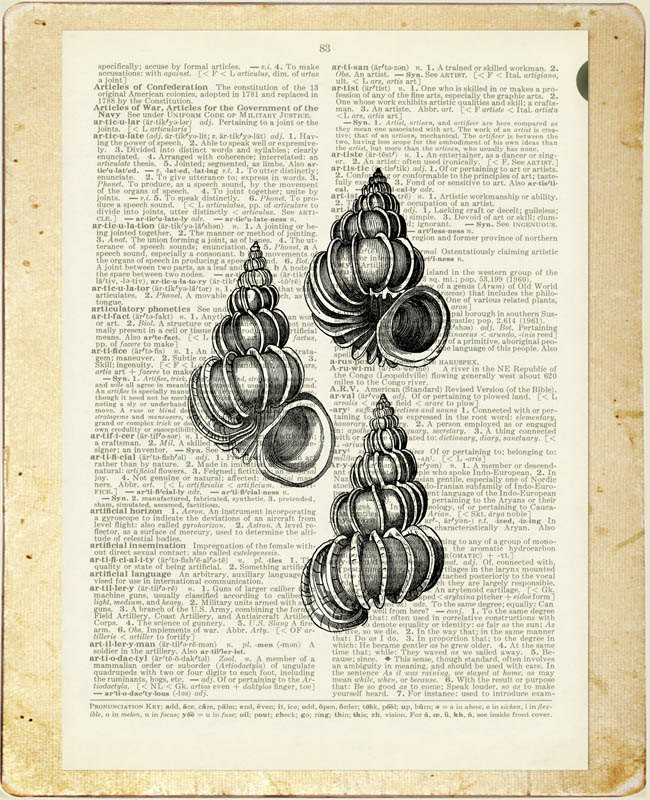 22-Sea-Shells-Jean-Cody-Vintage-Dictionary-Page-Art-Prints-www-designstack-co