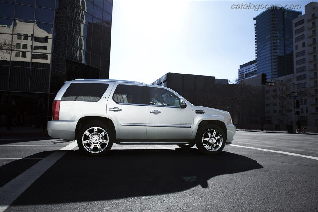 ��� ����� ������� ������� 2013 - ���� ������ ��� ����� ������� ������� 2013 - Cadillac Escalade Photos