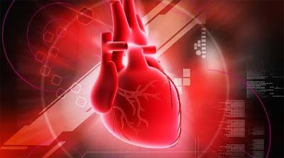 Obat Gagal Jantung Kongestif Herbal