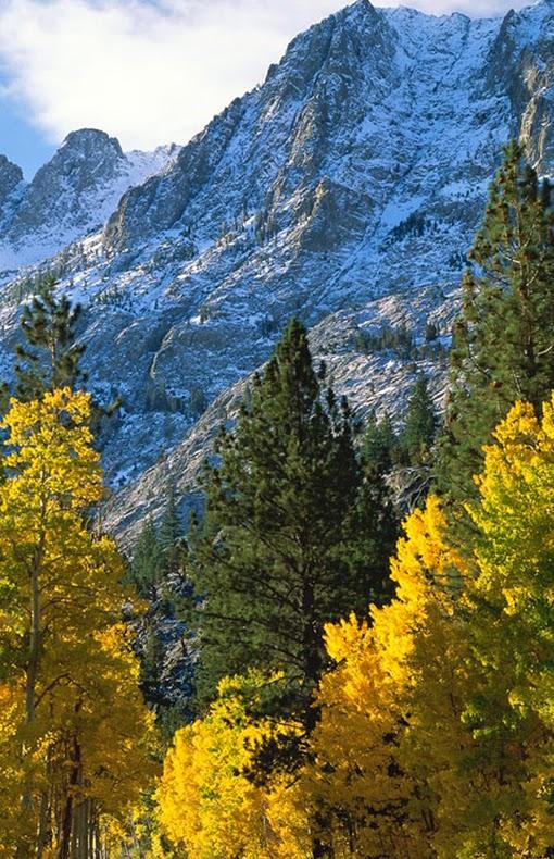 June Lake Loop, Eastern Sierra, Mono County, California
