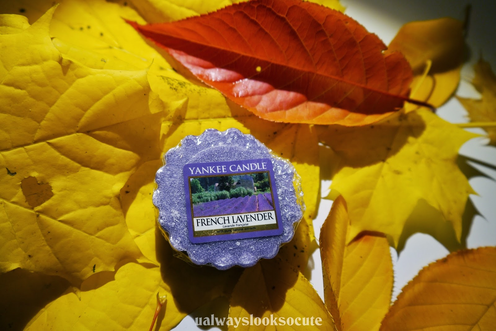 french lavender wosk