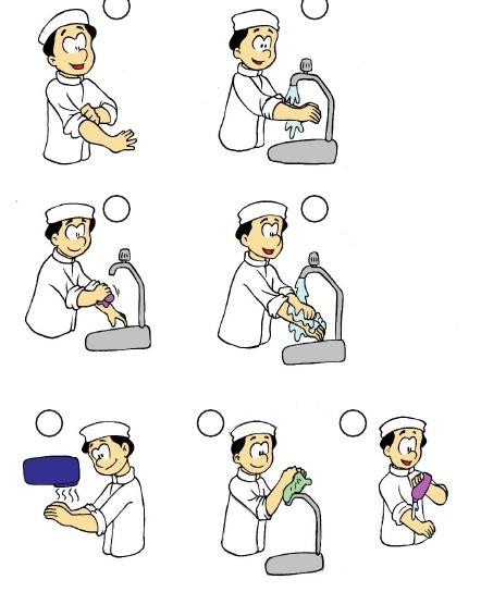 Etapas de higiene de un manipulador de alimentos Lavado y desinfeccion de utensilios de cocina