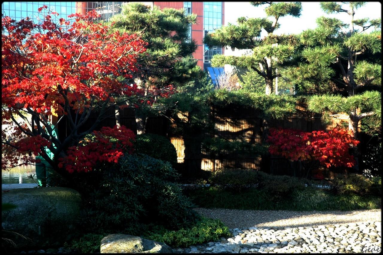 Chronique ordinaire le havre ma ville - Jardin japonais le havre ...