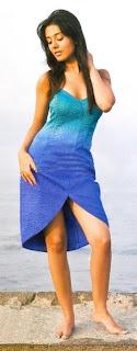 Amrita-Rao-Filmfare-Magazine-Picture