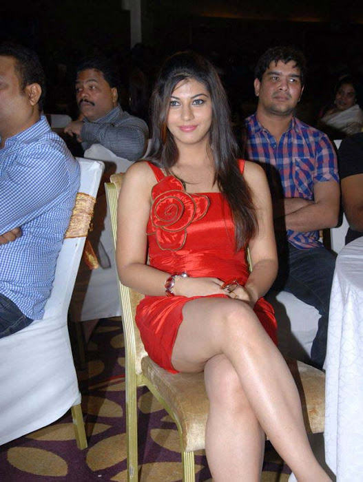 saara josh at disco audio launch photo gallery