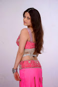 Sneha Ullal Glamorous in Pink Photo shoot-thumbnail-2