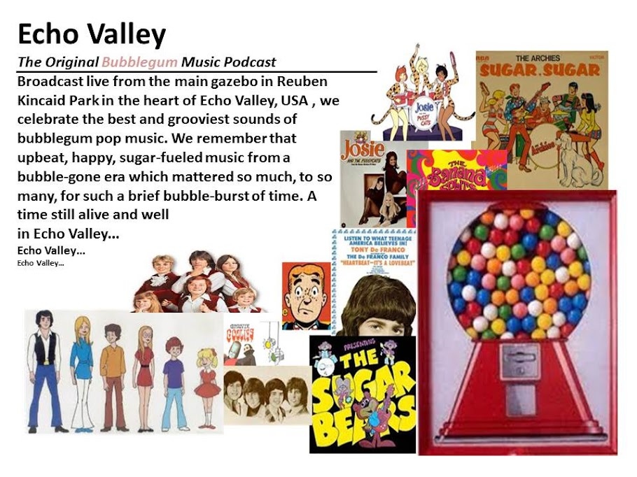 Echo Valley: The Bubblegum Music Podcast