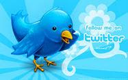 Twitter Official De La Aministradora Ceci