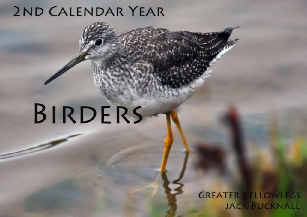 2nd Calendar Year Birders