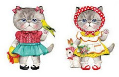 Telas gatos