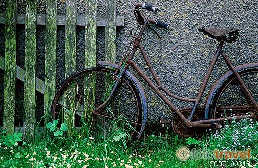 El pr ncipe de los mirlos la bicicleta de eugenio montejo for Guardar bicicletas en el jardin