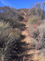 Upper section on the east ridge en route to Summit 2843, Angeles National Forest