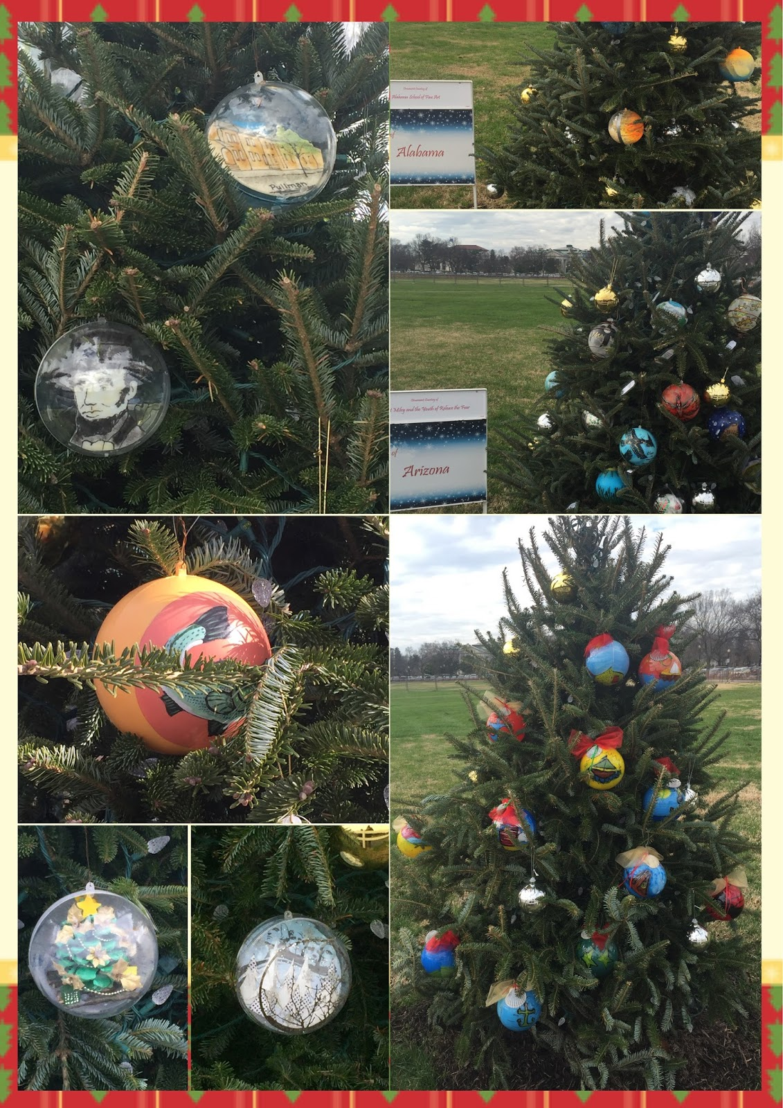 Wheelchair Travel Adventures December 2015 - Visiting The National Christmas Tree