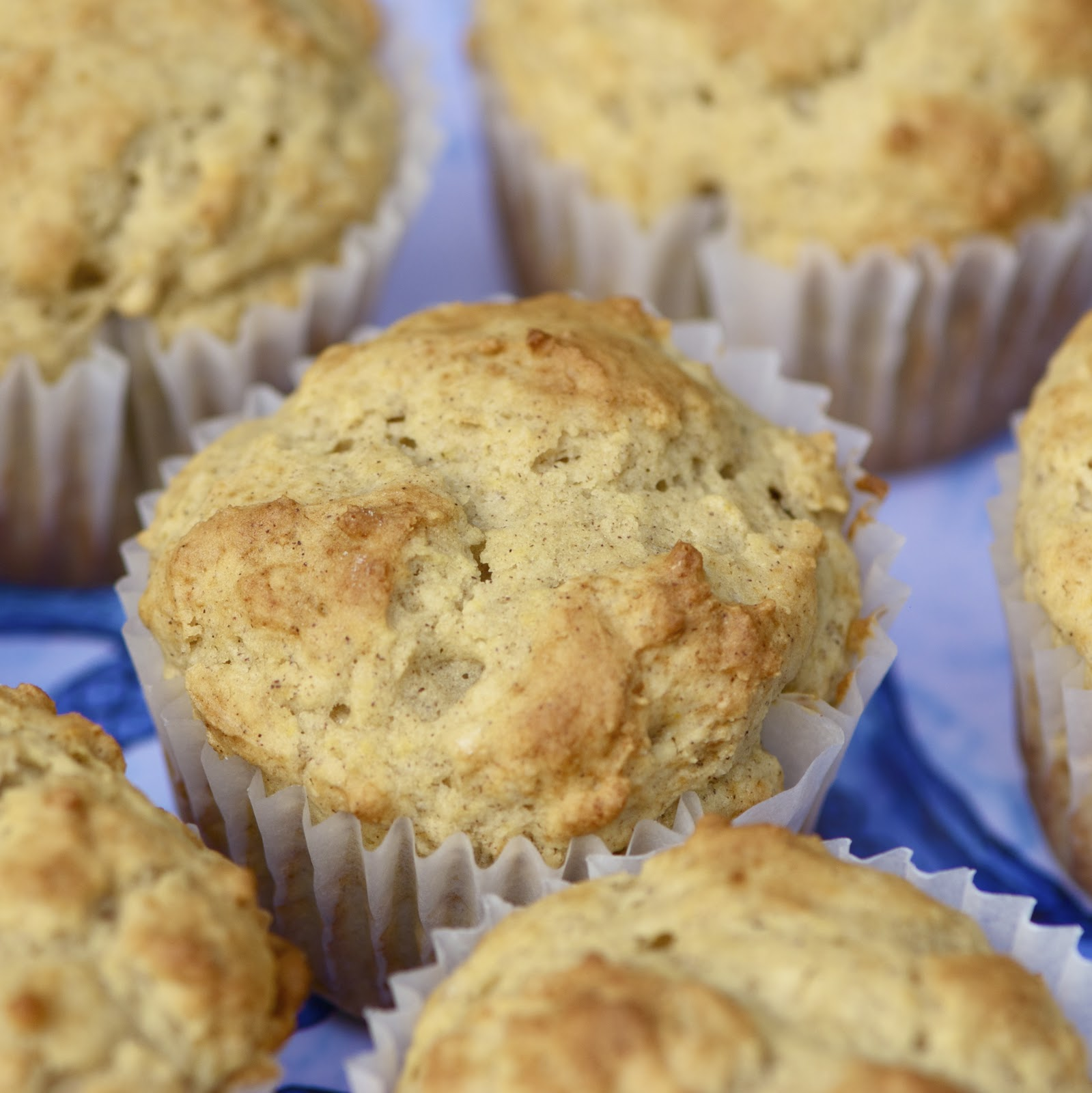 The Walsh Cookbook: Coffee Cake Muffins - Erin