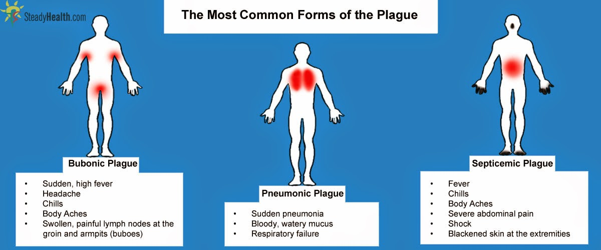 the symptoms and the course of the bubonic plague 2018-5-15  plague (yersinia pestis)  with proper antibiotic treatment, most symptoms of uncomplicated bubonic plague will subside within two to five days however,.