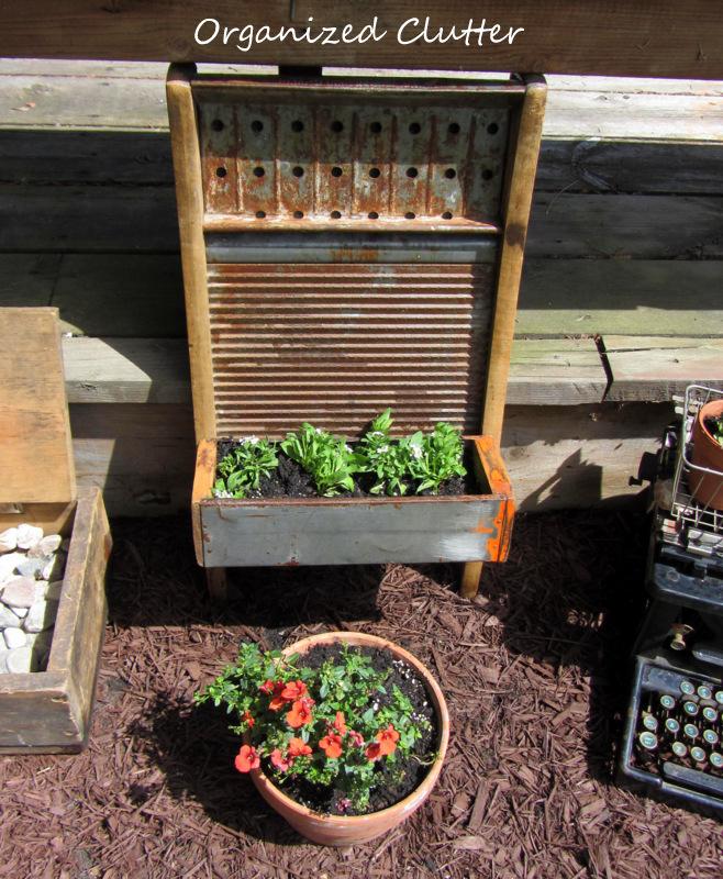 Junk Container Gardening www.organizedclutterqueen.blogspot.com