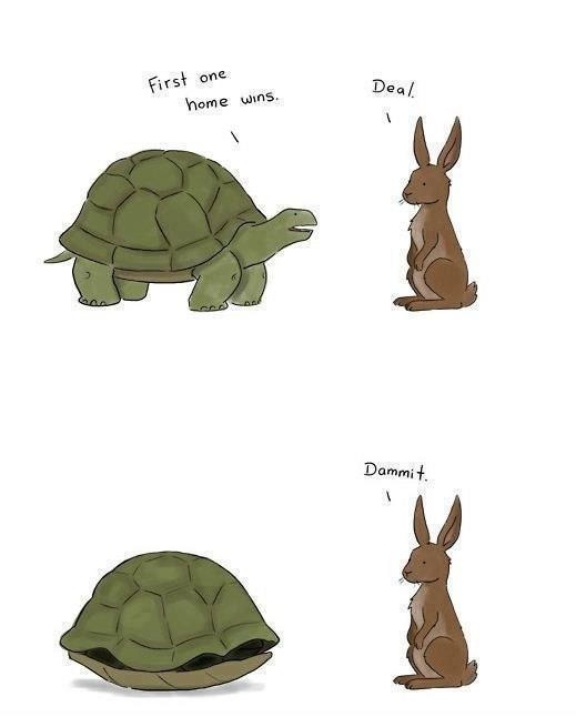 Turtle+-+First+one+Home+wins.+Rabbit+-+Deal...and+the+rest+is+History.jpg
