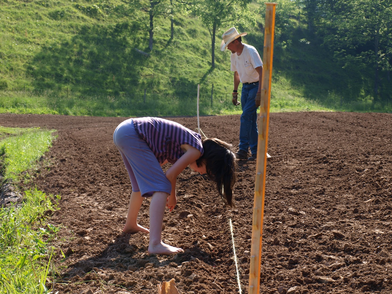 playing with soil becoming a farmer Soil ph is a measure of acidity or alkalinity a ph of 7 is neutral, above 7 is alkaline and below 7 is acid because ph is measured on a logarithimc scale, a ph of 6 is 10 times more acid than a ph of 7.