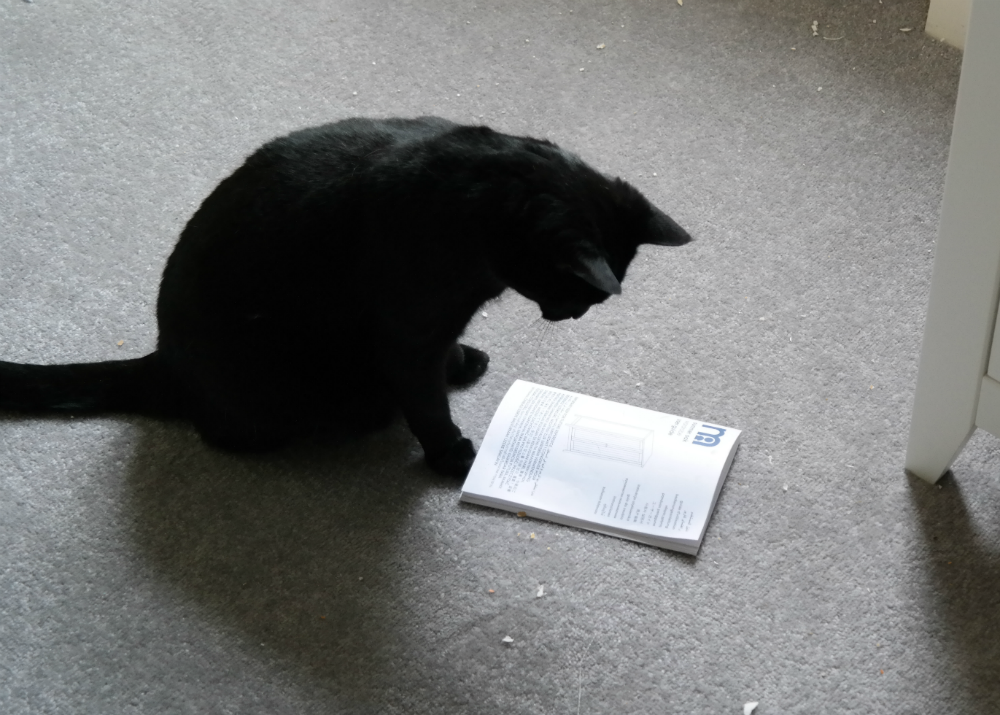 Black cat (Gizmo) reading a wardrobe assembly instruction manual