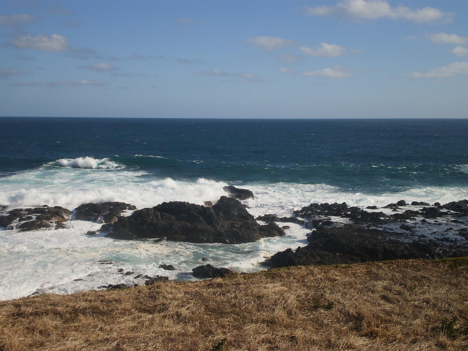Phillip Island Blogspot Reppureissaus