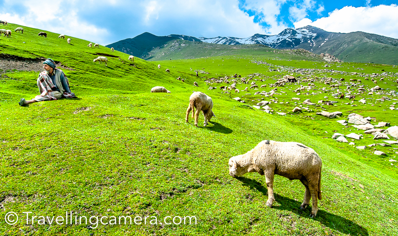 I love exploring hills and road journeys make these explorations special. Road Journey from Delhi to Srinagar through Mughal Road has been one of the best Road Journeys so far. After 3 years, today I came across some these photographs from the ride and thought of sharing this post with Travel & Photography enthusiasts.Mughal Road is the road between Bafliaz to Shopian district in the Kashmir valley. Bafliaz is a town in the Poonch district of Jummu & Kashmir state of India. Mughal road is approximately 85 kilometers which passes through beautiful Pir Panjal Mountain range Mughal road brings Poonch and Rajouri districts closer to Srinagar in Kashmir valley. The distance between Srinagar and Poonch has been reduced from 588km to 126km through Mughal Road. This route used to be old Mughal road which is constructed again through beautiful terrains of Kashmir.  Mughal road was historically used by Moghul emperors to travel and conquer Kashmir in 16th century. Mughal road was used by Akbar to conquer Kashmir in 1586 and his son Emperor Jahangir died while returning from Kashmir on this road near Rajouri.Mughal Road also makes for alternate road route to Kashmir valley from rest of India, other than main Jammu Highway through Jawahar Tunnel (Banihal Tunnel).The famous Mughal road passes through Buffliaz, Behramgalla, Chandimarh, Poshana, Chattapani, Peer Ki Gali , Aliabad, Zaznar, Dubjan, Heerpora and Shopian. Hirapor Wildlife Sactuary also comes on the way. In fact Mughal road crosses through Mughal road in Kashmir.Mughal road crosses through beautiful landscapes full of high deodars, huge mountains, snow covered peaks, green meadows, water streams of different sizes, army points and lot more. On our way, we took few breaks for tea, snacks & lunch. There are very few options for lunch but you can enjoy tea at different places on Mughal Road.