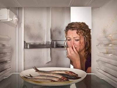 9 Tuyệt chiêu khử mùi hôi ở tủ lạnh tận gốc đơn giản