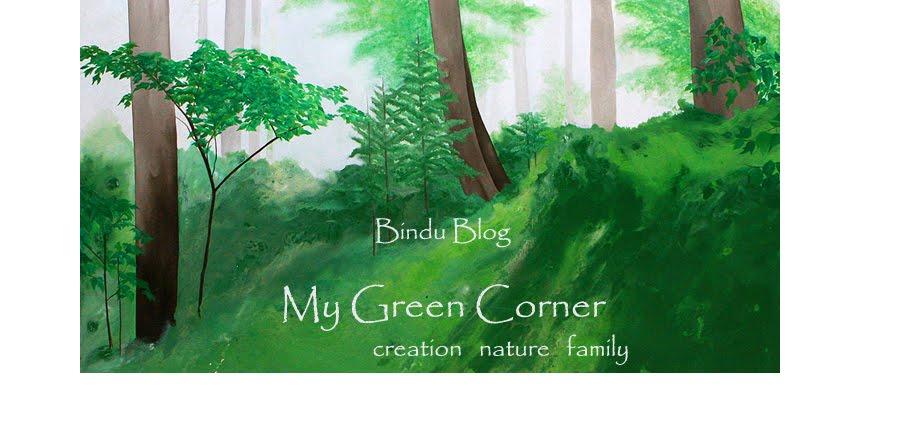 My Green Corner