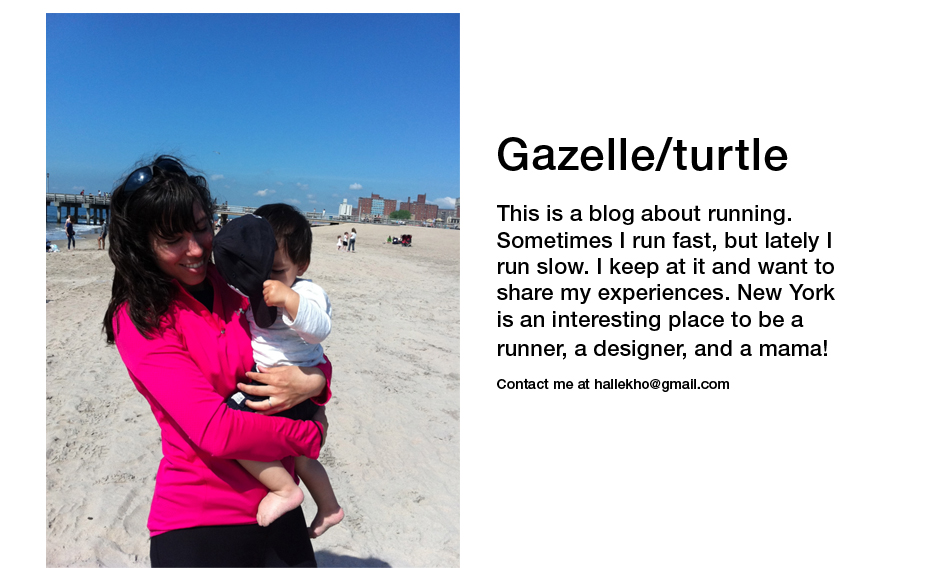 Gazelle and Turtle