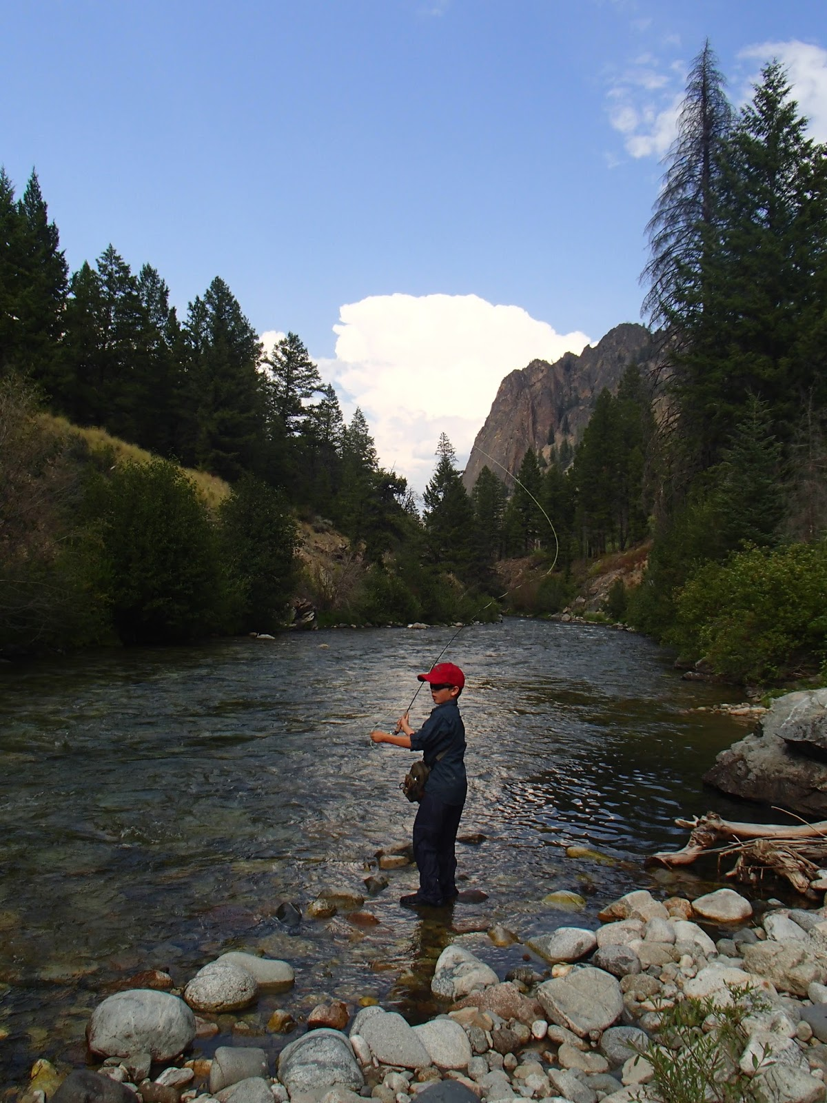 Cutthroat furled leaders fly fishing idaho mountains for Fly fishing idaho