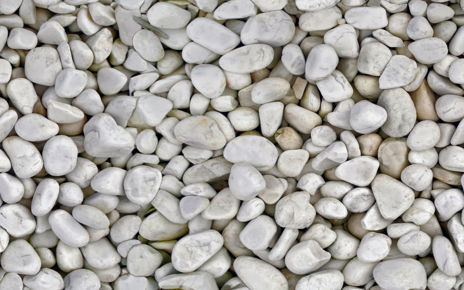 Tileable White Pebbles Texture Maps Texturise Free