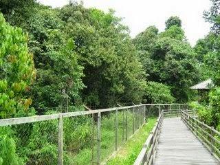 Wisata Hutan lindung sungai Wain Kota Balikpapan