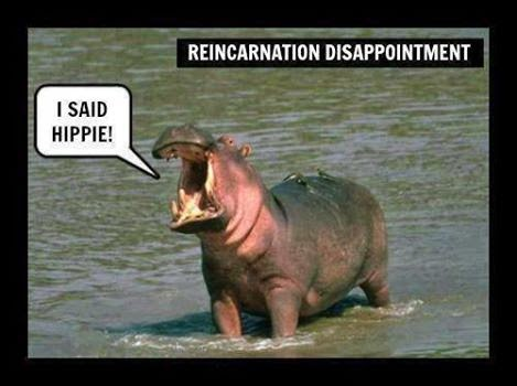 Reincarnation gone wrong !!