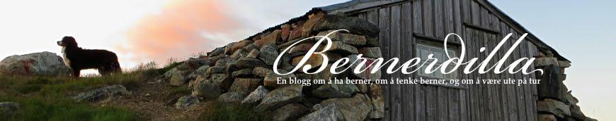 Bernerdilla