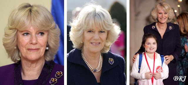 So far, Camilla has come up with three ways of wearing the brooch.