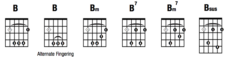Hitjerker Songwriting Guitar Chords For Beginners