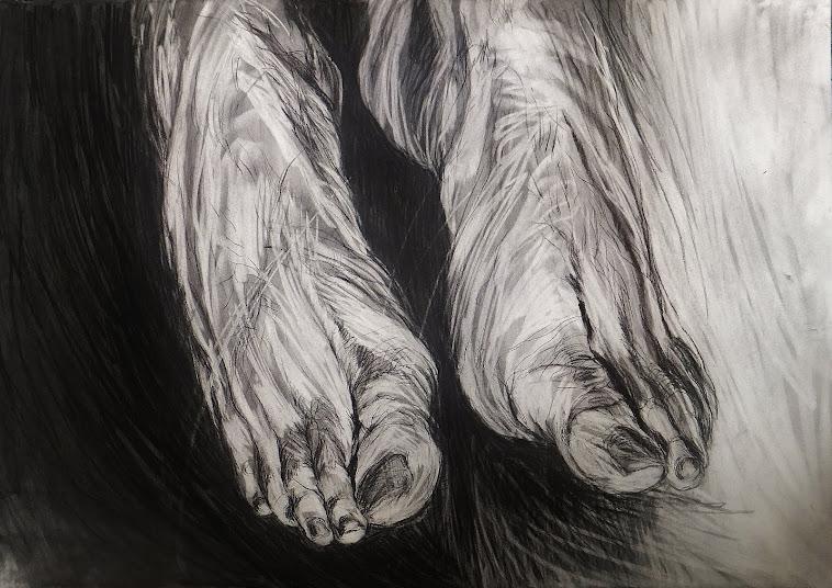étude pieds fusain 2012.