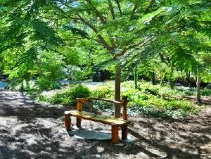 Morikami Japanese Garden, Florida USA