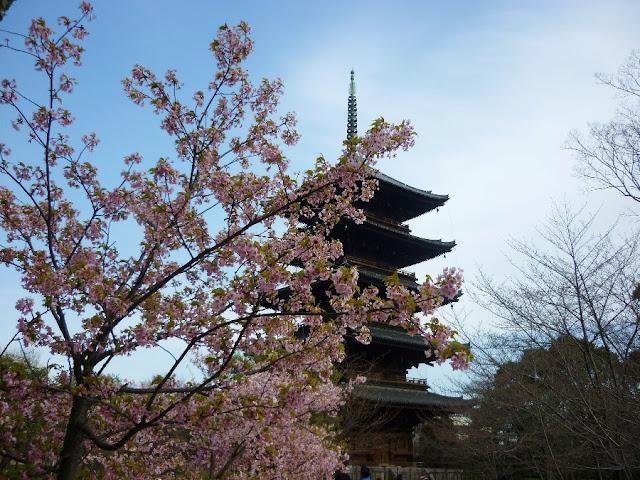 cosa vedere a kyoto, toji, kyoto